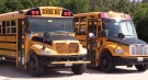 School buses are parked in Wingham, Ont. on Friday, Sept. 11, 2020. (Scott Miller / CTV News)