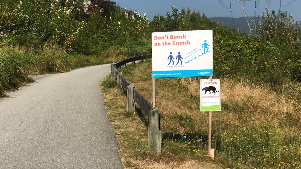 A sign warning people about a cougar in the area is seen near the Coquitlam Crunch trail. (Facebook/ B.C. Conservation Officer Service)