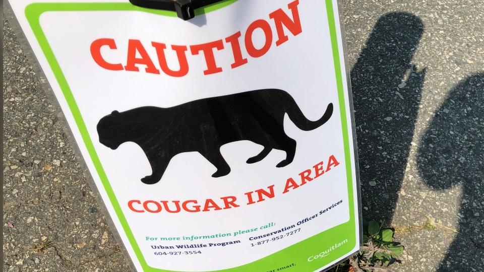 Cougar warning sign
