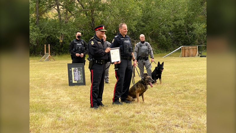 Lehbridge Police Chief Shahin Mehdizadeh, Sgt. Rick Semenuik and Ymos, a police dog who retired after eight years with the Lethbridge police.