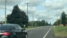 There are concerns after teens were reportedly playing 'chicken' on Norfolk County Road 23 in Houghton, Ont. is seen Tuesday, Sept. 15, 2020. (Sean Irvine / CTV News)