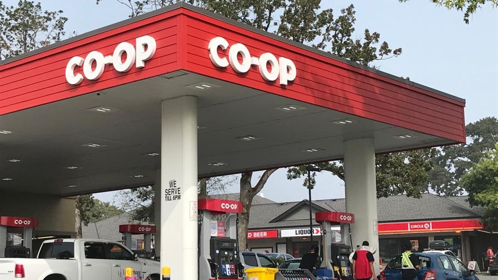 coop co-op