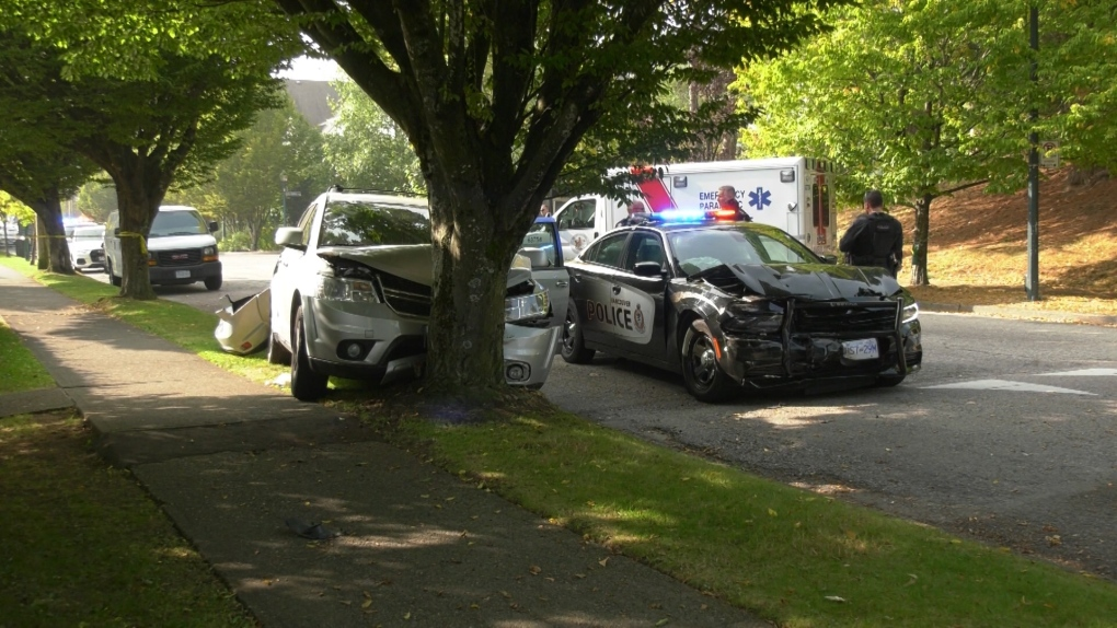 South Van arrest