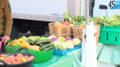 We check what you can find during harvest at the Regina Farmers' Market