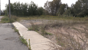 Vacant lot where a former strip club once stood purchased by City of Sault Ste. Marie for more than double the estimated value. Sept. 16/20 (Christian D'Avino/CTV Northern Ontario)