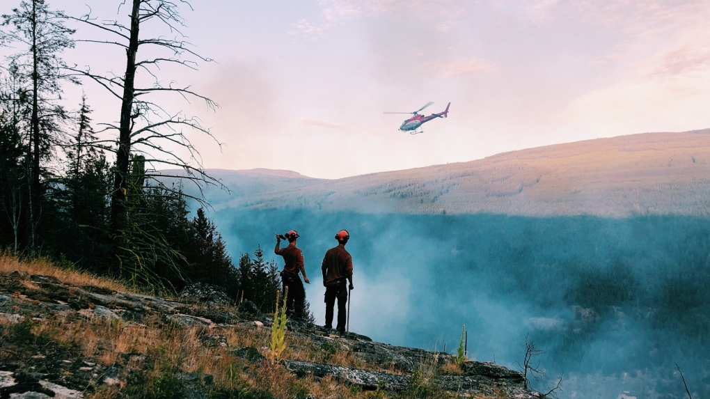 wildfire service