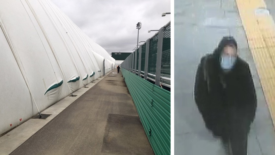 Edmonton Police Service say a white male climbed over the field's west rail around 10:30 p.m. on Sept. 13 and cut the dome in several places. (Photo provided.)