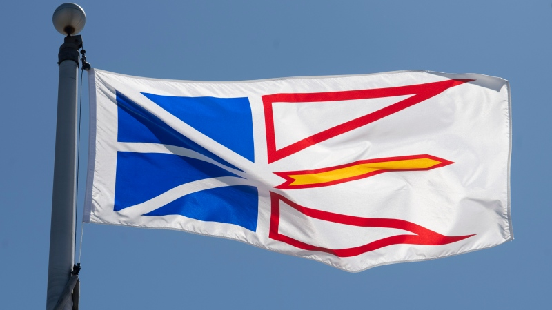 Newfoundland & Labrador's provincial flag flies on a flag pole in Ottawa, Monday July 6, 2020. (THE CANADIAN PRESS / Adrian Wyld)