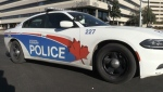 Sudbury police examining issues and challenges