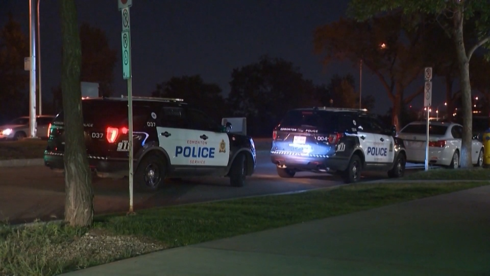Edmonton police cars parked on a summer night. (CTV News Edmonton)