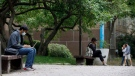 People are seen lounging on Ryerson University campus in Toronto, Tuesday, Sept. 8, 2020. THE CANADIAN PRESS/Cole Burston
