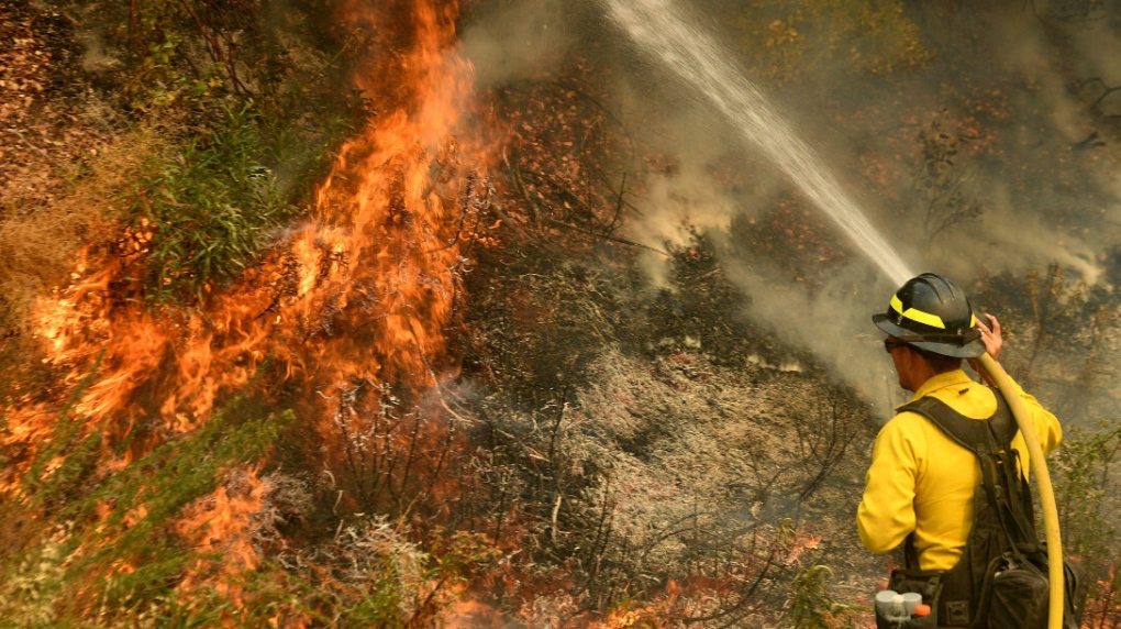 A Firefighter Is Killed In California Wildfire Sparked By Gender Reveal Party