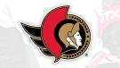 "The Ottawa Senators unveiled a new primary logo on Friday, a modified original ""2D"" logo. (Photo courtesy: Ottawa Senators)"