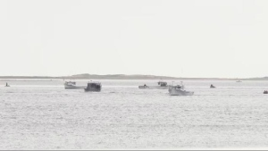 Fishing vessels have been heading out all day Friday to help look for two boys missing after a boat capsized off the west coast of P.E.I. on Wednesday night.