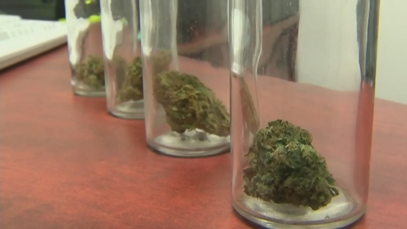 Cannabis cafes could be coming to Manitoba