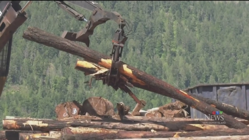 Island mill applauds new B.C. lumber regulations