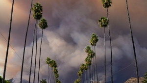 The Ranch Fire sends a plum of smoke into the sky, Thursday, Aug. 13, 2020, in Azusa, Calif. Heat wave conditions were making difficult work for fire crews battling brush fires and wildfires across Southern California on Thursday. (AP Photo/Marcio Jose Sanchez)