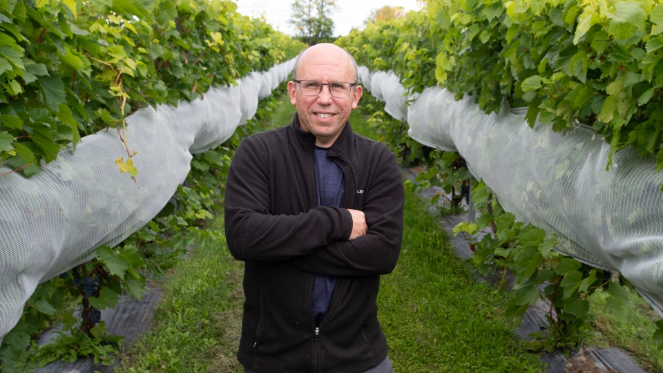 Benoit Pilon is seen at his Le Bourg des Cedres vineyard Friday, September 18, 2020 in Les Cedres, Que.THE CANADIAN PRESS/Ryan Remiorz