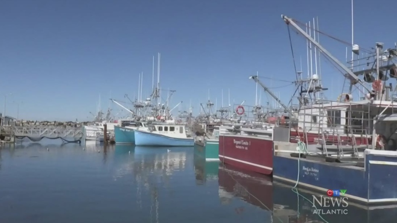Fishermen demand intervention in N.S.