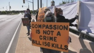 Animal rights activist holds protest along E.C. Row overpass