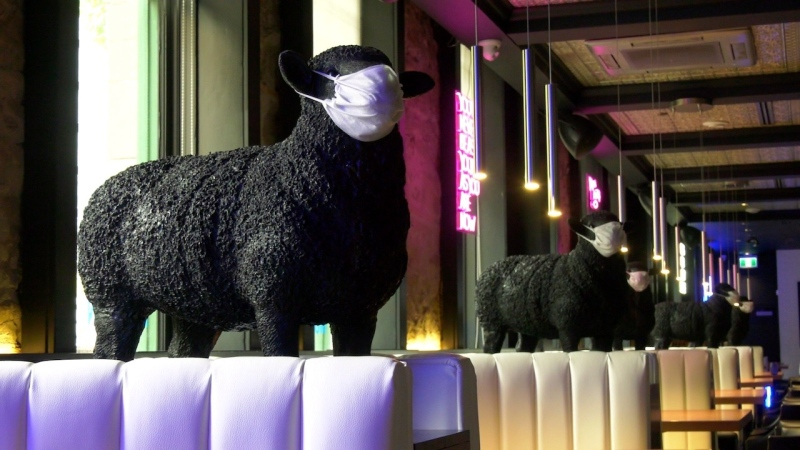 These black sheep figures are part of the decor at Modern Steak restaurant on Stephen Avenue. Owners say the masks are a tongue-in-cheek nod to the pandemic, and are asking for customers to be more considerate and compliant with the City's mask bylaw.