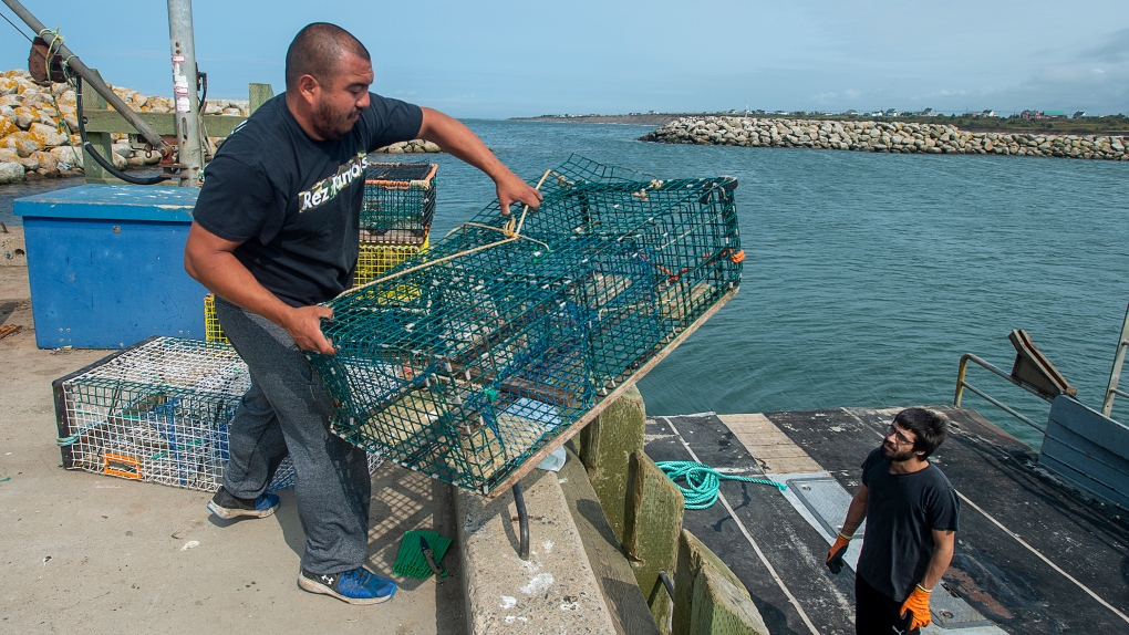 Sipekne'katik members load lobster trap