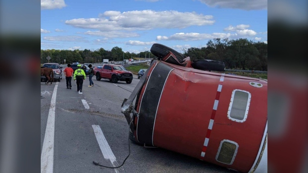 Horse trailer flips on Hwy. 401 in Kingston, Ont., horses treated for cuts