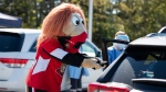 Spartacat, the official mascot of the Ottawa Senators, wears a mask as he gives a hat to a child after they received a nasal swab at a drive through, pop-up COVID-19 test centre outside the Canadian Tire Centre, home of the NHL team, in Ottawa, Sunday, Sept. 20, 2020. (Justin Tang/THE CANADIAN PRESS)