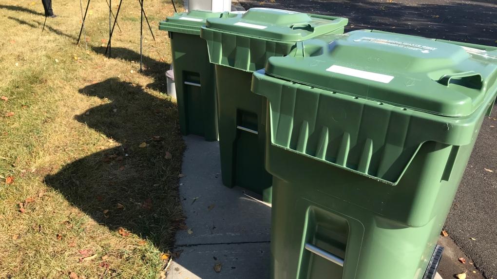 Regina green cart bin