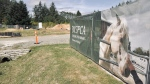 The shelter will be the first BC SPCA facility on Vancouver Island that can accommodate large farm animals: (CTV News)