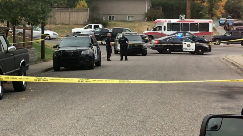 A man was killed in an apparent stabbing in the northeast community of Greenview.