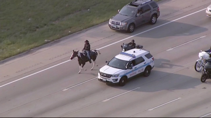 The 'Dreadhead Cowboy' is seen on the Dan Ryan Expressway in Chicago. (WLS / CNN)