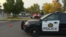 Police investigate Lynnwood stabbing