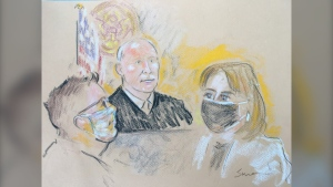 Pascale Ferrier is seen in this court sketch. (RALPH SIRIANNI)