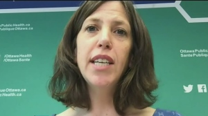 Ottawa's Medical Health Officer Dr. Vera Etches explains why someone might be fined for failing to self-isolate.