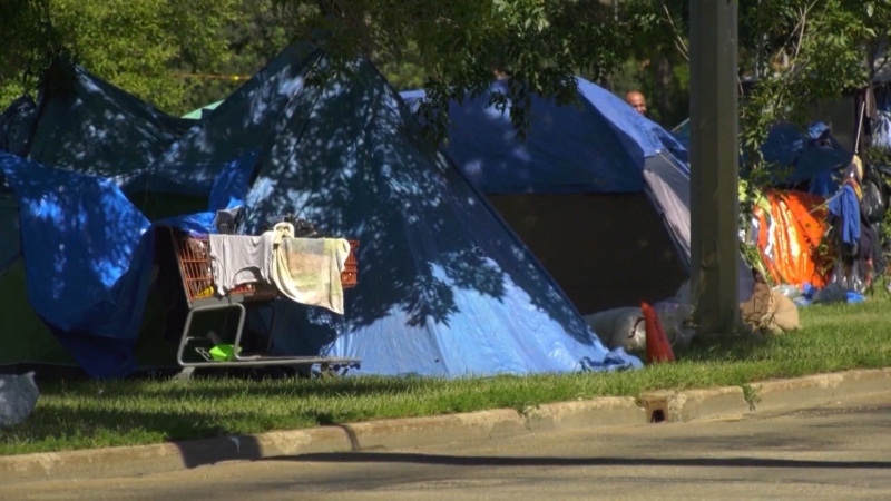 Mayor Don Iveson is seeking more money from the feds to help end homelessness in Edmonton. (CTV News Edmonton)