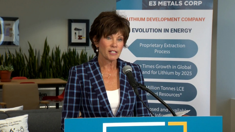 Energy Minister Sonya Savage announced a panel Wednesday to help the province become a world leader in mineral resource production.