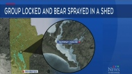 Charges laid following bear spray attack