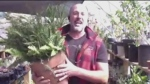 Fall gardening tips with Carson Arthur