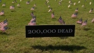U.S. COVID-19 death toll increases