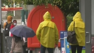 Messy weather prompts advisories in B.C.