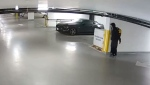 Victoria police say roughly $2,000-worth of items were stolen from an underground parkade last weekend: (VicPD)