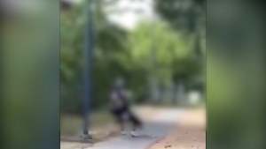 A still image from video (blurred because those in the video are believed to be minors) shows a teenager pulling another to the ground.