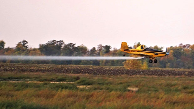 Spray plane that was very cool to watch! Photo by Heather Brown.