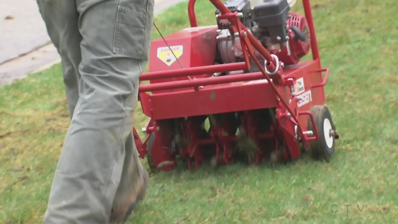 Getting your lawn ready for winter