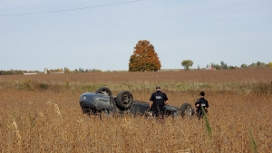 WRPS officers at the scene of a crash in Wellesley Township. (Source: Waterloo Regional Police)