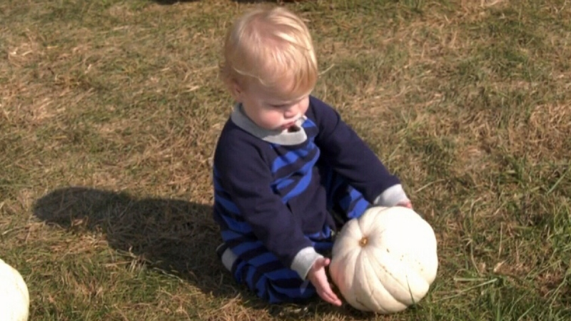 Busy start to Waterloo pumpkin season