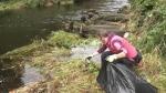 Activists clean up river