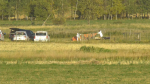 Sept. 26 plane crash
