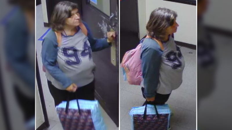 Missing woman Magdalena Rzemislawska, 69, was last seen in the area of King Edward Avenue and St. Patrick Street at around 3:30 a.m. Sept. 9, 2020. (Photo provided by the Ottawa Police Service)